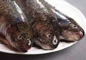 Three fishes on plate — Stockfoto