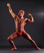 Muscular male bodybuilder posing — Stock Photo