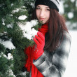 Young beautiful woman behind snow covered pine — Foto de Stock   #43112415