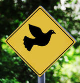 Yellow label with pigeon pictogram — Stock Photo