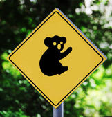 Koala pictogram — Stockfoto