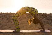 Yoga practice. Woman doing bridge pose — 图库照片