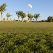 Low angle view on golf field - Foto de Stock