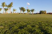 Low angle view on golf field — Stock Photo