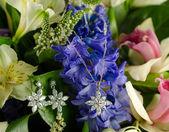 Jewellery on flowers — Stock Photo