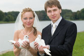 Young wedding couple with pigeons — Stock Photo