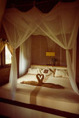 Bed with canopy — Foto de Stock
