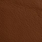 Kůže textury na pozadí — Stock fotografie