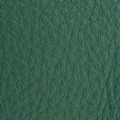 Green leather texture macro shot — Stock Photo