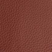 Leather macro shot — Stock Photo