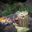 Traditional offerings at Bali — Stock Photo