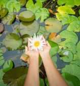 Woman holding lotus flower - waterlily — Stock Photo