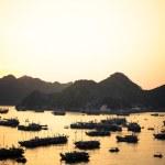 Cat Ba port sunset — Stock Photo #51057757