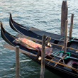 Stock Photo: Gondolas