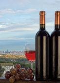 Barcelona and wine — Stock Photo