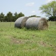 Two large hay bales by a pasture — Stock Photo