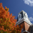 Bright autumn tree by roof — Stockfoto