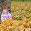 Cute little girl is playing with leaves in autumn park — Stock Photo #32540321