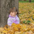 Cute little girl is playing with leaves in autumn park — Stock Photo #32540345
