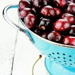 Morello Cherries - Foto Stock
