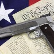 Gun and Constitution - Stock Photo