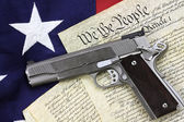 Gun and Constitution — Stockfoto