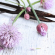 Fresh Chives And Antique Scissors — Stock Photo