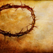Crown of Thorns — Stock Photo #41236575