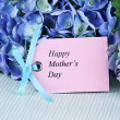 Mothers Day Card and Flowers — Stock Photo
