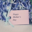 Faded Mothers Day Card and Flowers — Stock Photo