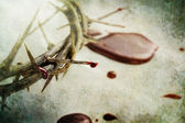 Blood and Thorns — Stock Photo