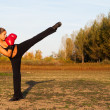 Постер, плакат: Beautiful kick boxing girl exercising high kick in the nature on sunny summer day