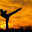 Постер, плакат: Silhouette of beautiful kick boxing girl exercising high kick in the nature on sunny summer day