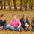 Teenage boys and girls having fun in the nature on beautiful autumn day — Stock Photo #15524071