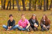 Teenage boys and girls having fun in the nature on beautiful autumn day — Stock Photo