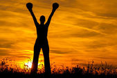 Silhouette of the girl with boxing gloves exercising in the nature at sunset — Stock Photo
