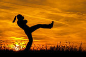 Silhouette of beautiful kick boxing girl exercising kick in the nature on sunny summer day — Stock Photo
