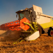 Modern harvester on the agricultural field on sunny summer day — Stock Photo