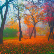 Landscape painting showing beautiful park on misty autumn day — Stock Photo