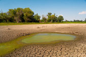 Polluted water and cracked soil of dried out lake during drought — Stock Photo