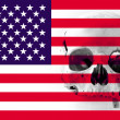 American flag with human skull in the background - Stock Photo