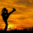 Постер, плакат: Silhouette of beautiful kick boxing girl exercising kick in the nature on sunny summer day