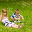 Brother and sister on the meadow — Stock Photo #24947149