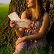 Beautiful lady reading letter under the tree on sunny summer day — Stock Photo
