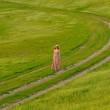 Beautiful lady walking in the nature — Stock Photo #25257749
