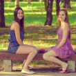 Happy girls sitting in the park — Stock Photo #26164327