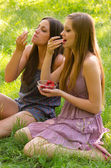 Two beautiful girls eating strawberries in the nature on sunny summer day — Stockfoto