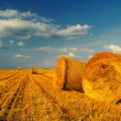Hay bales on the field — Stock Photo #27627621