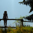 Silhouette of girl standing on the wooden fence — Stock Photo #29062479