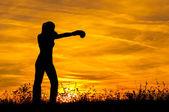 силуэт бокс девушки на природе — Стоковое фото